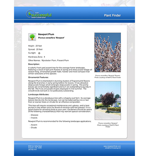 NetPS Plant Finder Printable Plant Information Page